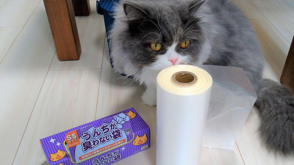 対策 猫 ベランダ